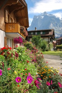 Grindelwald, Switzerland. Photo by Afton Tyler.